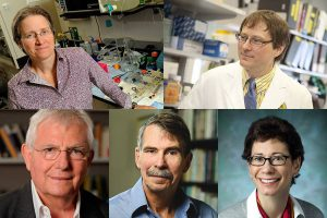 Five from Johns Hopkins elected to American Academy of Arts and Sciences